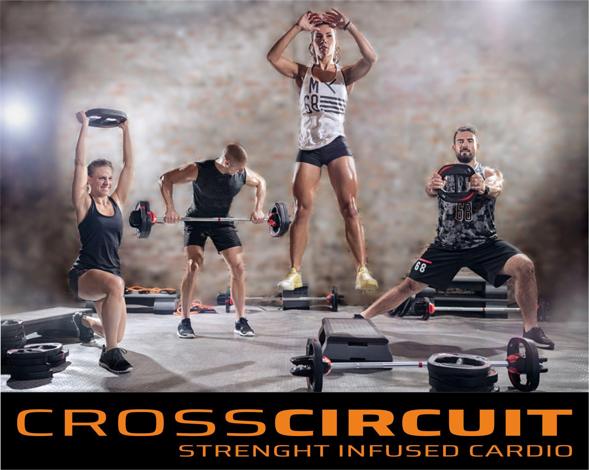 CrossCircuit